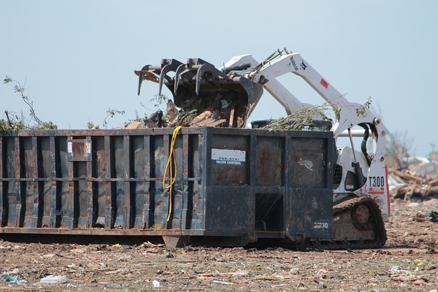 How to Decide between a Dumpster Rental or Junk Removal Service