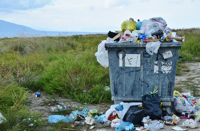 How the Dumpster Rental Process Makes Your Life Easier