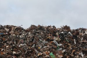The Consequences of Illegal Waste Removal and Littering