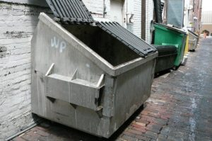 How Would It Work to Use a Dumpster Rental for a Day?